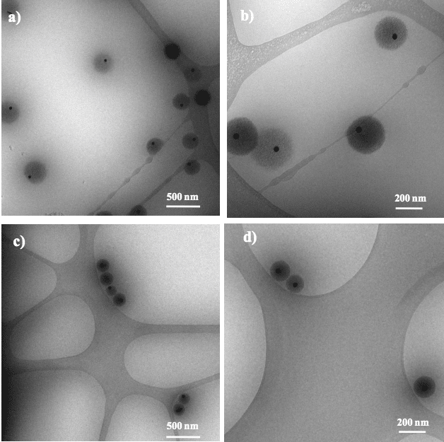 Ana Belén publishes in Journal of Colloids and Interfaces !!