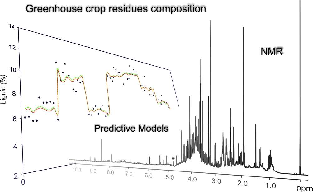 Luisma and Curro publish in Phytochemistry ! Congratulations guys ! We now know how to apply NMR on greenhouse crop biomass !