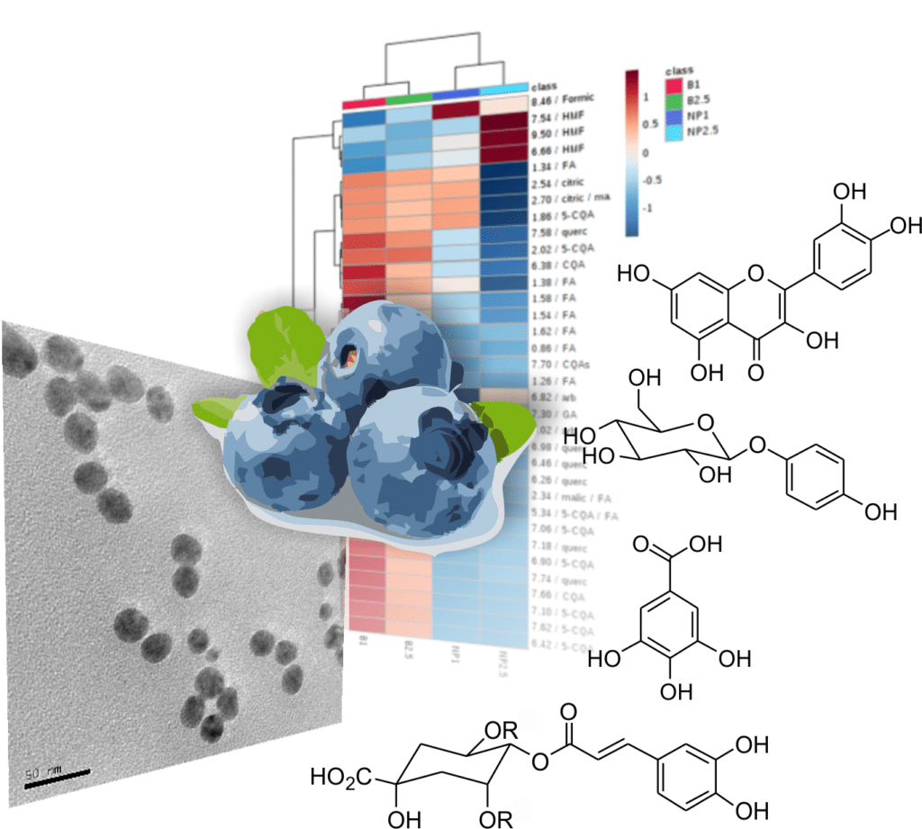 Ana publishes in ACS Sustainable Chemistry & Engineering ! Congratulations ! Applying NMR Metabolomics on blueberries ! What's next?