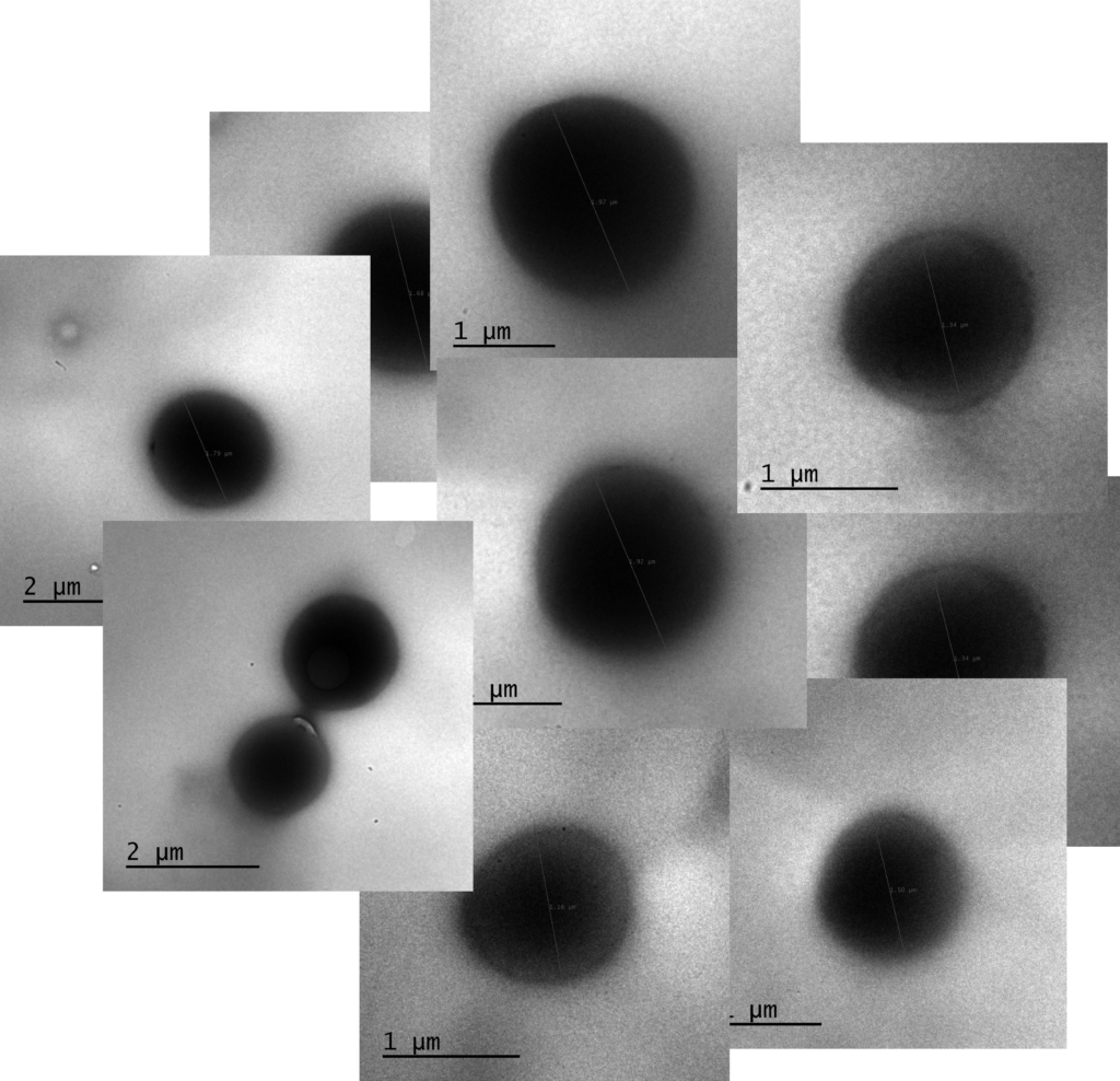 Preparing cyclic PLA as spheric nanoparticles ! Finding the optimized low PDI procedure !!